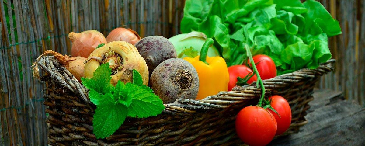alimentação vegana saudável